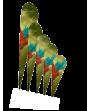 Tauschbild für Beachflag Alu Drop